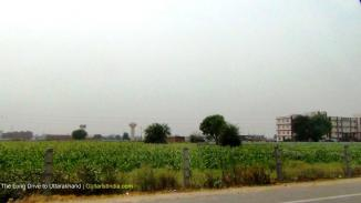 15_The Long Drive to Uttarakhand