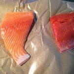 King and sockeye salmon