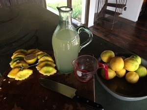 Lemonade made with stevia