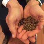 Gabe Kapler with coffee beans