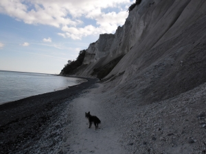 The walk on the Møn
