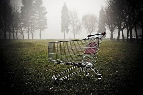 5392293237_0678cc5849_shopping