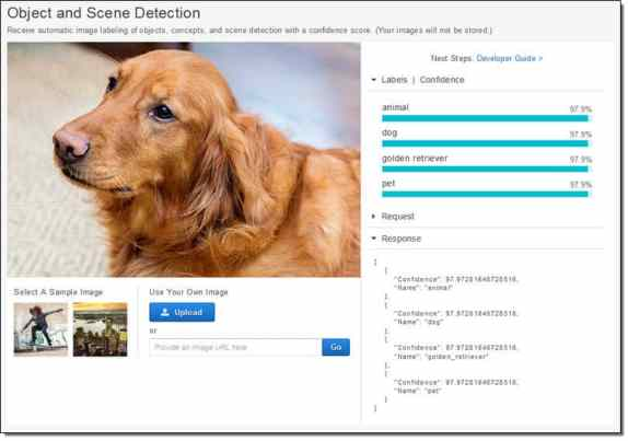 Amazon visual recognition can recognize breeds