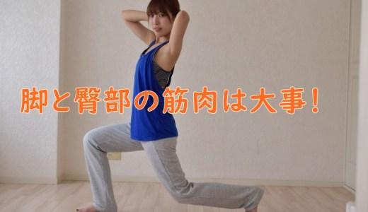 脚・臀部のトレーニングと代謝の関係