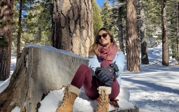 Winter Activities: Palm Springs Edition