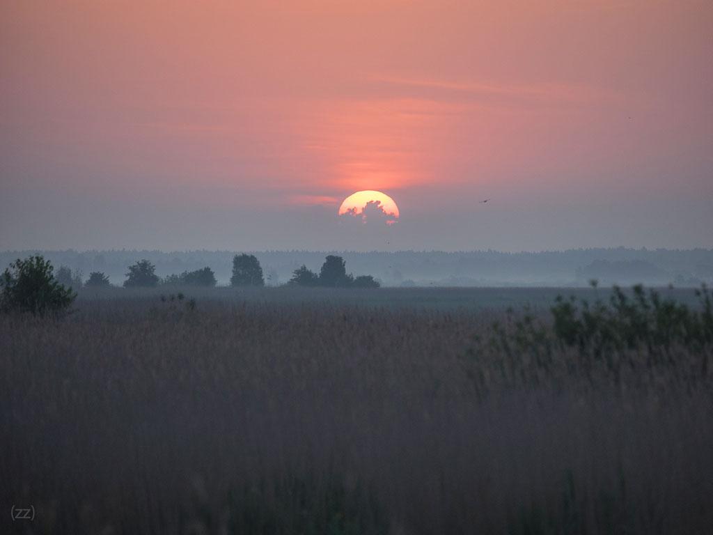 Saullēkts pie Liepājas ezera