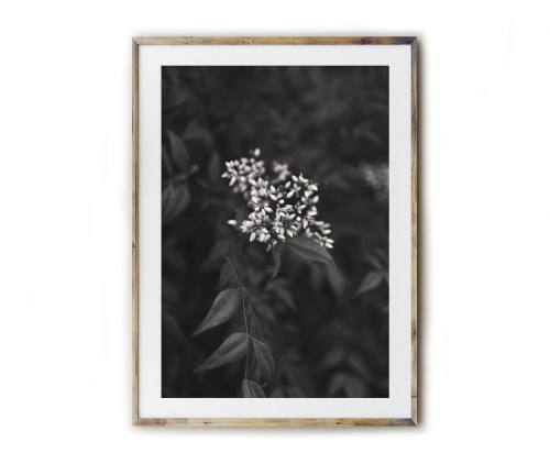 Fine art for the Southern home! Beautiful photography and typography prints created by Kara Layne now available to purchase from the Kara Layne Shop. Come and browse the collection and find something you love and enjoy it in your own home! #WallArtIdeas #ScenesOfTheSouth #SoutherLiving #ModernFarmhouseDecorIdeas #FineArtPrints