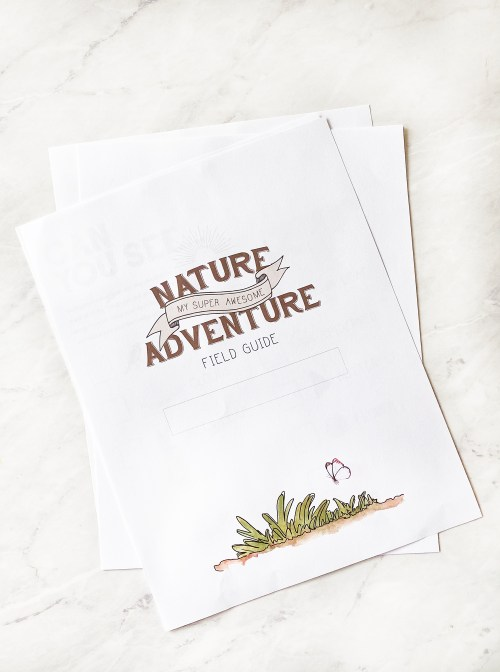 Nature activity for the kids and printable field guide. Nothing beats being out in nature. This is a fun family activity for the kids to enjoy being outside, exploring, and getting dirty. Get the free printable field guide over on KaraLayne.com! #NatureActivity #NatureWalk #NatureActivityForKids #FreePrintablesForKids #NatureFieldGuide #GetOutdoors #HomeschoolActivityIdeas #HomeschoolIdeas #FamilyActivitiesAtHome #Outdoors