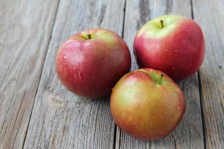 No Bake Vegan Apple Pie Bars-1-2