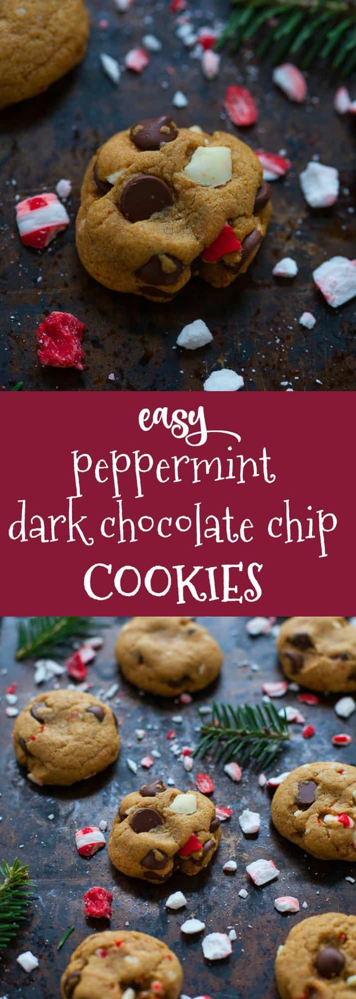 Delicious treats for the holidays! These easy peppermint dark chocolate chip cookies are made with whole-wheat flour and are perfectly festive for a holiday cookie swap!
