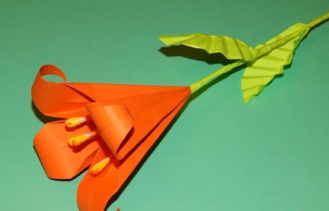 Paper Flowers & # 8212; Mga scheme at mga template para sa paglikha ng mga kulay ng papel na yugto 127.