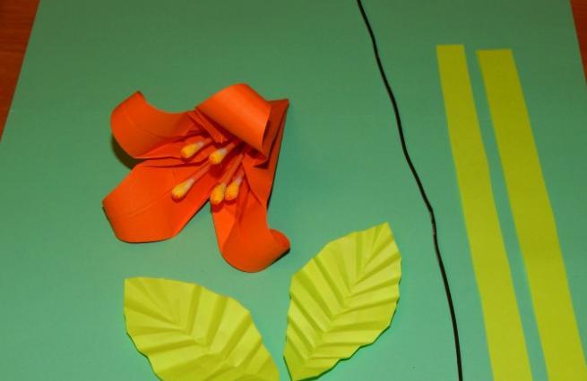 Paper Flowers & # 8212; Mga scheme at mga template para sa paglikha ng mga kulay ng papel na yugto 123.