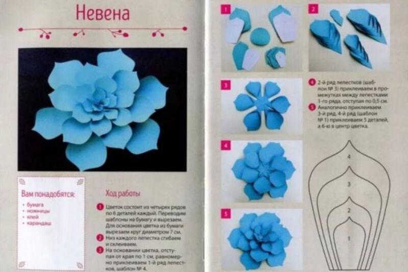 Paper Flowers & # 8212; Mga scheme at mga template para sa paglikha ng mga kulay ng papel na yugto 9.