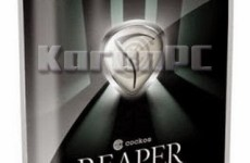 Cockos REAPER 6.06 (x86/x64) + Portable