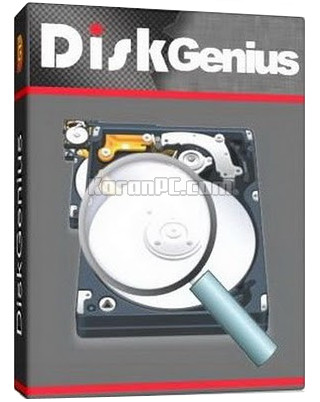 DiskGenius Professional Full Download
