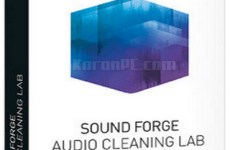 MAGIX SOUND FORGE Audio Cleaning Lab 24.0.0.8