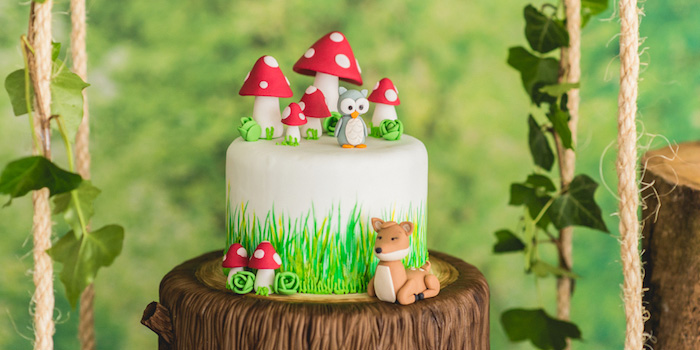Kara S Party Ideas Matteos Enchanted Forest Birthday Party