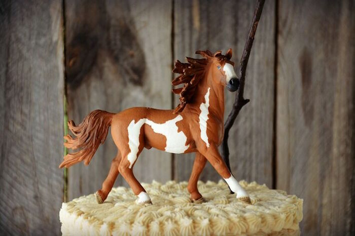 Karas Party Ideas Rustic Horse Birthday Party Karas Party Ideas