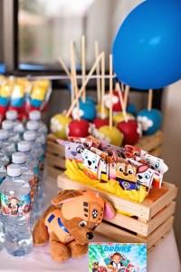 Kara's Party Ideas Paw Patrol Puppy Party | Kara's Party Ideas