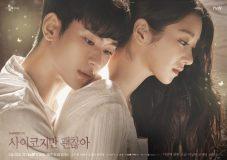 サイコだけど大丈夫 キャスト/登場人物 キム・スヒョン&ソ・イェジ主演韓国ドラマ