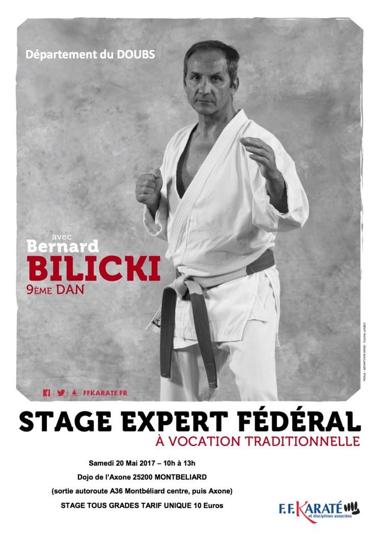 Stage_Bernard_Bilicki_Mai_2017.jpg