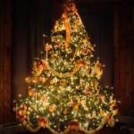 Arbre de Noël des adultes – 14 décembre – 20h15 à Mouthe