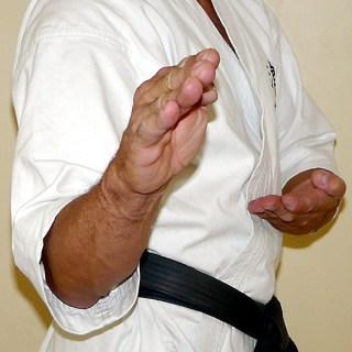 Ken-shuto-kyosen-kamae [widok z przodu]