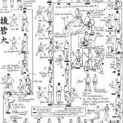 Martial Arts Diagram How To Wire Up Spotlights Karate Shotokan View