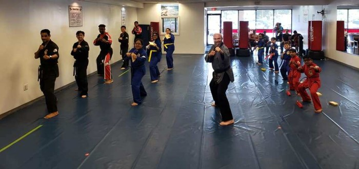 Martial Arts Duluth