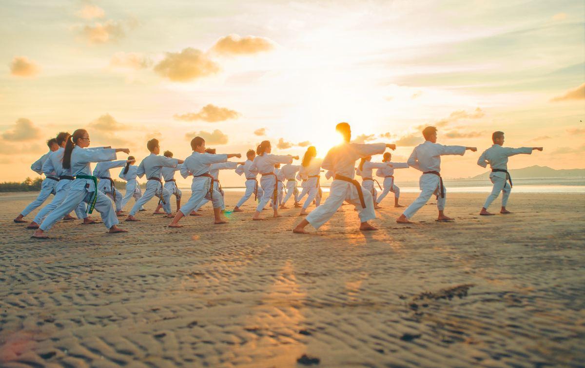 Karate Class Belmont MA