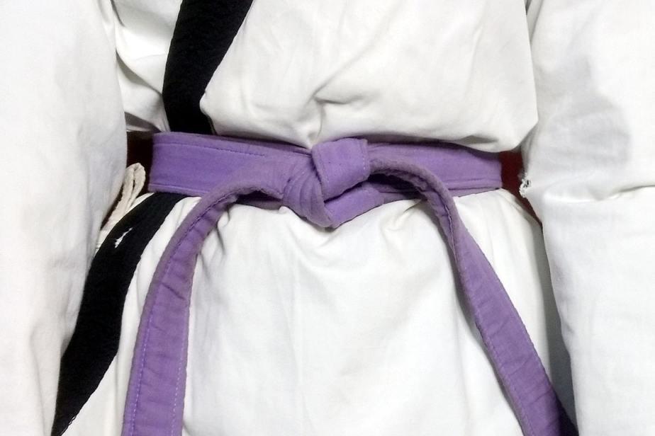 Purple Belt Karate Meaning in Hindi | जानिए कराटे में बैंगनी बेल्ट का मतलब।