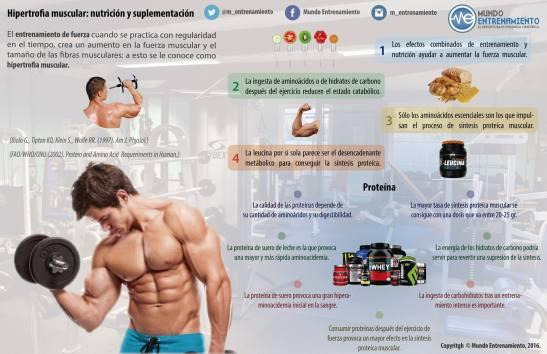 Infografía sobre hipertrofia muscular.