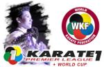 karate1_logo