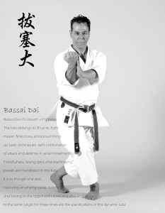 Sensei-Tanzadeh-Bassai-Dai-Kata