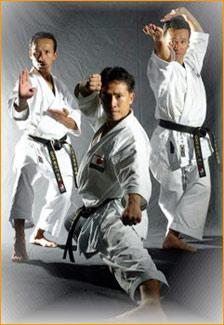Hasegawa hermanos