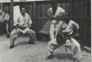 Yagi_chi-ishi_1955