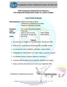 campeonato-sudamericano-de-karate-2016-curso-tcnico-de-kumite-1-638