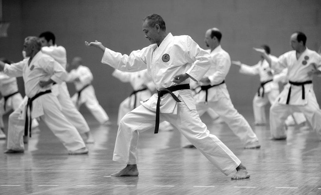Resultado de imagen de ciencia y karate