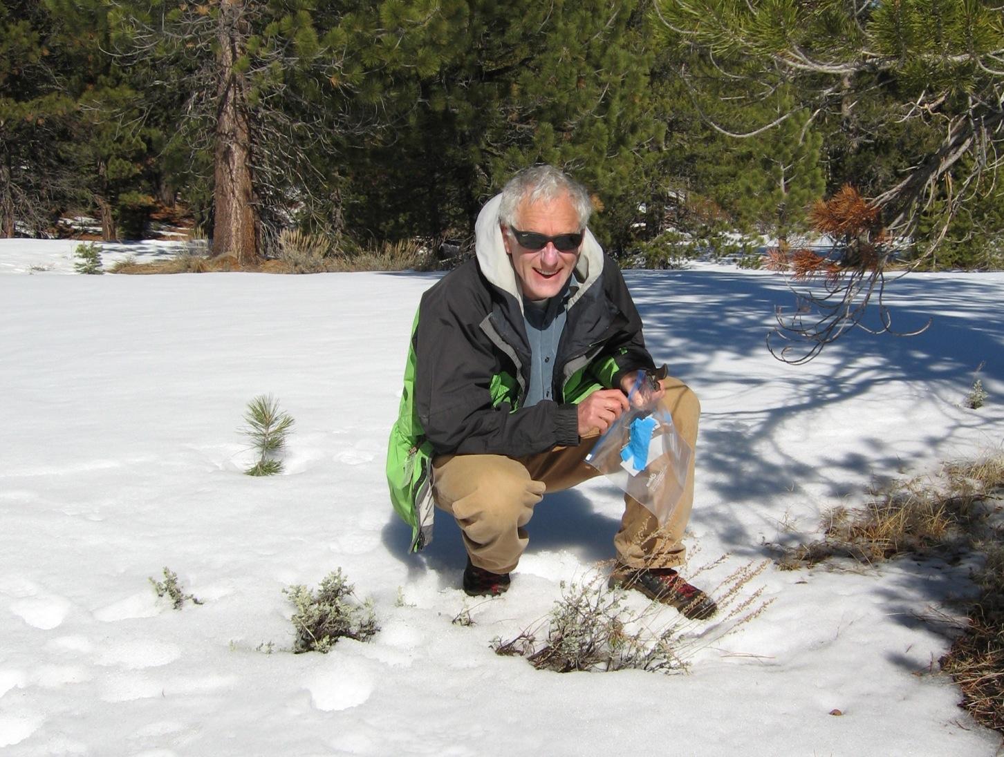 Sagehen snow experiment