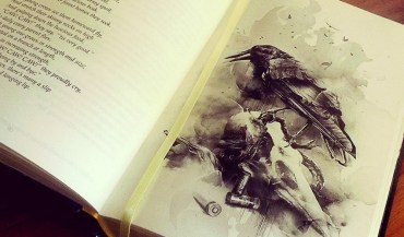 Illustration for The Cronicle of Crows by R.M