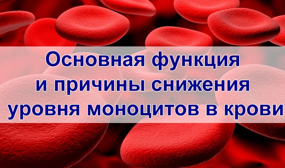 Снижение уровня моноцитов в крови