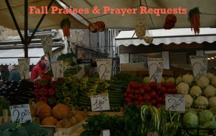 Fall praises and requests