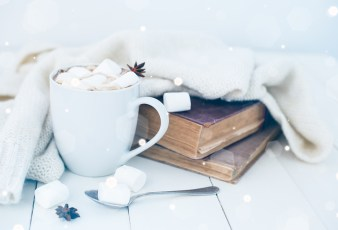 Cozy winter home background, cup of hot cocoa with