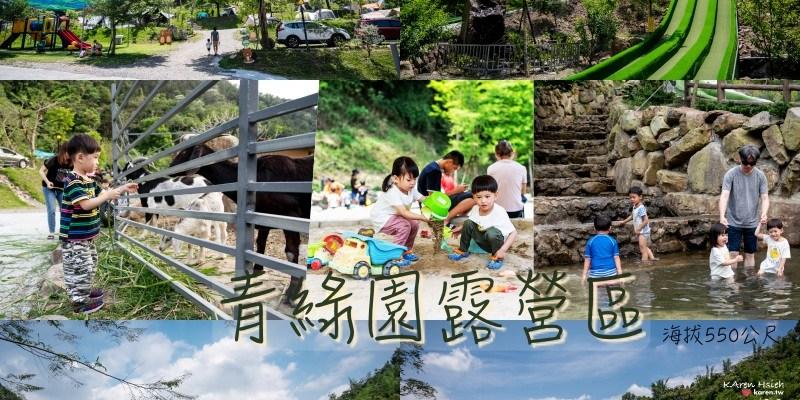 青綠園   孩子的天堂:滑草道、戲水池、溜滑梯、沙坑、餵羊、釣魚,南投魚池親子露營區(NO.2)