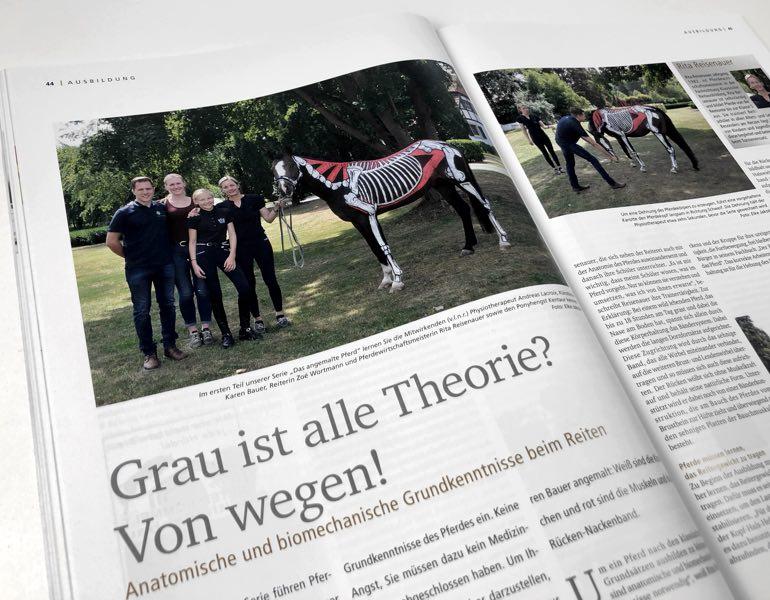 Anatomie Pferdesport Journal Pferd bemalen