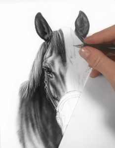 Bleistiftzeichnung making of