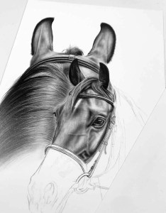Collage Bleistift Pferd