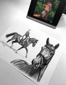Collage Zeichnung Pferd