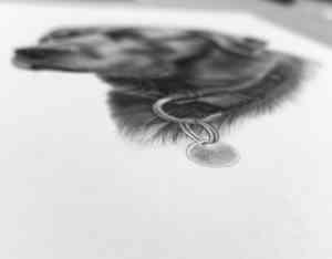 Labrador gezeichnet