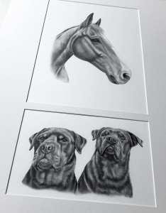 Passepartout Doppelausschnitt Hund Pferd